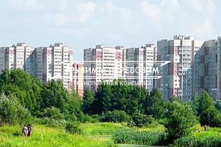 Грузчики в Ивантеевке